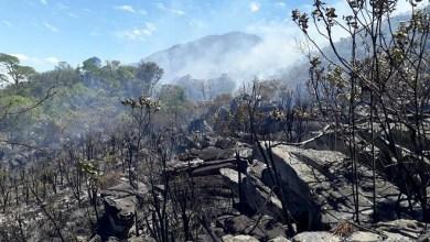 Photo of Chapada: Novo foco de incêndio é combatido no Parque Municipal Serra das Almas em Rio de Contas