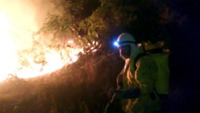 Photo of Chapada: Brigadistas de Andaraí extinguem sexto foco de incêndio em menos de duas semanas
