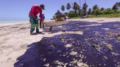 Photo of #Brasil: Voluntários em limpeza de praias nordestinas precisam ter cuidados com a saúde