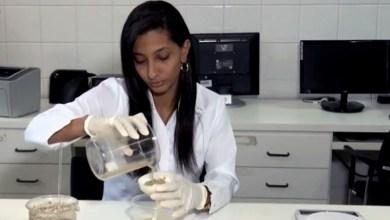 Photo of #Bahia: Estudante da Uefs desenvolve inseticida artesanal contra Aedes aegypti feito a partir de semente de árvore