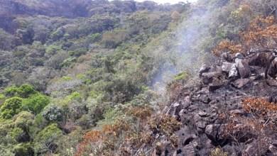 Photo of Chapada: Três incêndios florestais são controlados em diferentes municípios da região