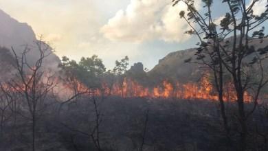 Photo of Chapada: Fogo é controlado na região de Piatã por brigadistas após uma semana de destruição