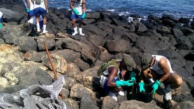 Photo of #Urgente: Visitas a Abrolhos são suspensas pelo ICMBio por causa da chegada de óleo na região