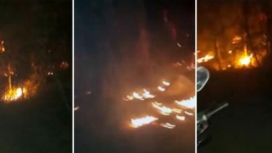 Photo of Chapada: Brigadistas controlam incêndio florestal que ameaçava nascente de rio em Seabra