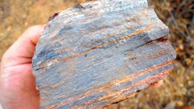 Photo of Chapada: Licitação para extração de minério de ferro em Ibipitanga será no dia 10 de dezembro