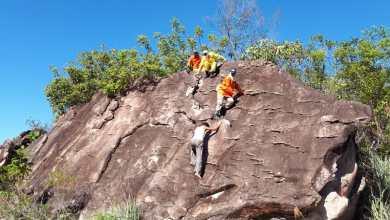 Photo of Chapada: Brigadistas de Andaraí passam por mais uma fase de treinamento continuado