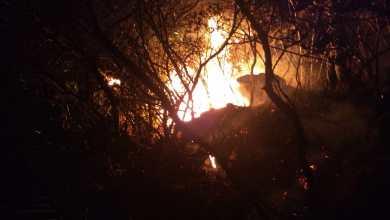 """Photo of Chapada: Novo foco de incêndio é registrado entre Ibicoara e Iramaia; """"situação está bem complicada"""""""