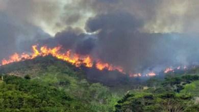 Photo of Chapada: Incêndio de grande proporção avança pela Serra do Sincorá entre Ibicoara e Iramaia; veja vídeos