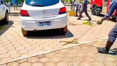 Photo of #Bahia: Corpo de Bombeiros resgata cobra de dentro de motor de carro em Barreiras