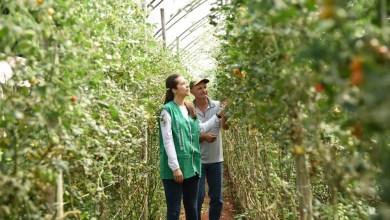 Photo of #Bahia: Serviço Nacional de Aprendizagem Rural oferece 240 vagas para curso técnico gratuito em agronegócio