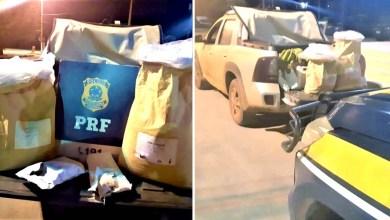 Photo of Chapada: Contrabandista é preso com agrotóxicos ilegais de origem chinesa na região de Seabra