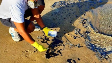 Photo of Fragmentos de óleo ainda são encontrados em 433 localidades do Nordeste, RJ e ES