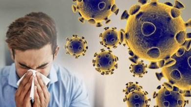 Photo of Evite o coronavírus fortalecendo o seu sistema imunológico através da alimentação