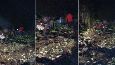 Photo of Chapada: Dois graves acidentes são registrados na região de Andaraí; motorista de carreta carregada de repolhos morre