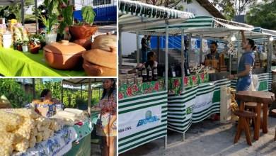 Photo of #Seabra: Feira Agroecológica da Chapada Diamantina terá edições em abril, maio e junho