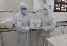 Photo of #Chapada: Lençóis contabiliza mais quatro novos casos de infecção por coronavírus e intensifica testagem rápida