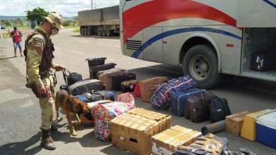 Photo of #Chapada: Ação policial conjunta prende foragido da justiça na região de Itaberaba transportando crack