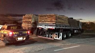 Photo of #Chapada: PRF apreende cargas de madeira transportadas ilegalmente durante fiscalização na região de Capim Grosso