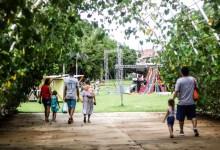 Photo of #Salvador: ACM Neto libera reabrir parques públicos na próxima semana na capital baiana mesmo com a pandemia