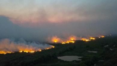 Photo of #Brasil: STF vai analisar ação que obriga governo Bolsonaro a criar plano de combate às queimadas do Pantanal