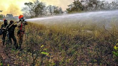 Photo of #Chapada: Brigada de Lençóis arrecada doações e quer ajudar no combate a incêndios no Pantanal mato-grossense