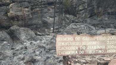 Photo of #Chapada: Incêndio na região de Mucugê destrói parcialmente o Projeto Sempre-Viva