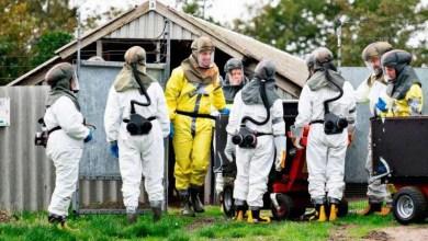 Photo of #Mundo: Governo da Dinamarca sacrifica 17 milhões de animais para conter variante do coronavírus no país