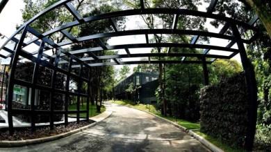 Photo of #Salvador: Jardim Botânico é reaberto ao público após investimento de R$9,6 milhões da prefeitura