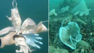 Photo of #Mundo: Mais de 1,5 bilhão de máscaras acabaram no mar em 2020, segundo entidade