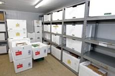 Câmara fria do Centro Estadual de Armazenamento de Imunobiológicos. Onde ficarão guardadas metade das vacinas enviadas para Bahia - Fotos Fernando VivasGOVBA (3)