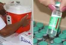 Photo of #Chapada: Itaberaba recebe 430 doses da vacina da Oxford e reforça a primeira etapa de imunização contra a covid