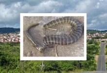Photo of #Chapada: Calango-coral é encontrado em Mairi e chama atenção de moradores que não conheciam o animal