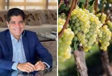 Photo of #Chapada: ACM Neto terá agenda com donos de vinícolas na região chapadeira de olho no pleito de 2022