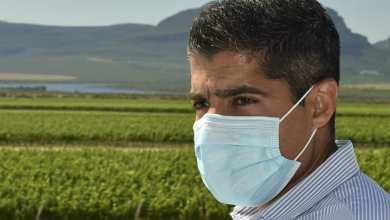 Photo of #Chapada: ACM Neto aponta para a produção de vinho que pode gerar crescimento econômico para região