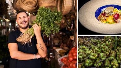 Photo of #Chapada: Licuri de Capim Grosso é um dos ingredientes de destaque em reality de gastronomia da Rede Globo