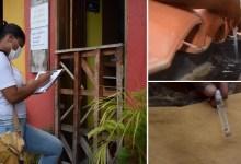 Photo of #Chapada: Distrito de 'Tanquinho' é uma das regiões do município de Lençóis com o maior número de focos de dengue