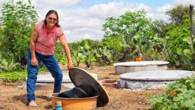 Photo of #Bahia: Preservação do bioma Caatinga tem investimentos de mais de R$2 milhões do governo estadual