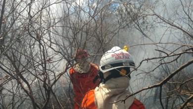 Photo of #Bahia: Bombeiros seguem no combate ao incêndio que começou há 3 dias em Ibotirama, oeste da Bahia