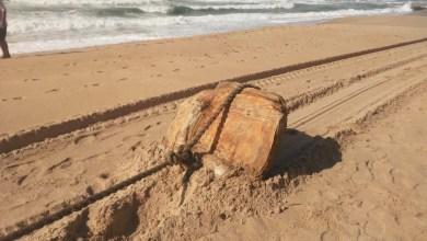 Photo of #Bahia: Pesquisador diz que 'caixas misteriosas' são fardos de borracha de navio nazista que estavam afundados no mar há 80 anos