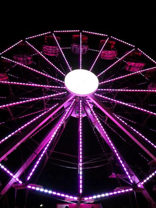 giro pela vida roda-gigante parque ibirapuera 2015