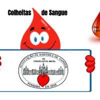 Mafra | Colheitas de Sangue em julho 2020