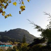 Sintra   Acessos Interditos em resposta a situação de perigo de incêndio na Serra de Sintra