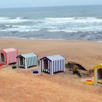 Praia das Amoeiras - Inaugurada a primeira praia para cães do concelho de Torres Vedras [Imagens]
