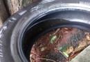 Prevenção: Pneus velhos, local de reprodução para o mosquito da dengue