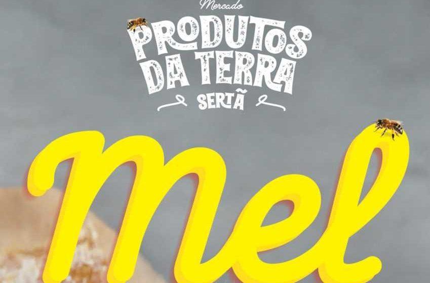 """Sertã: """"Produtos da Terra"""" vão destacar o Mel"""