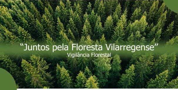 Vila de Rei: Voluntariado jovem para vigiar floresta com inscrições a decorrer
