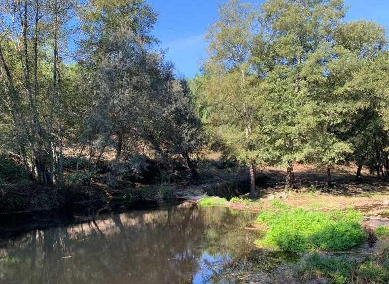 Oleiros: Potencial ecológico da Ribeira de Oleiros está a ser recuperado