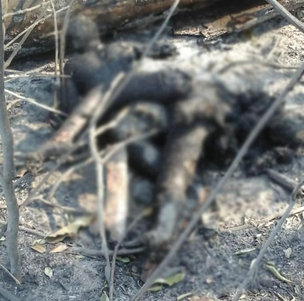 Casal morre abraçado ao tentar fugir de incêndio em RO