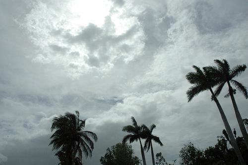 El cielo mudo prefigurando el espíritu de Libertad.