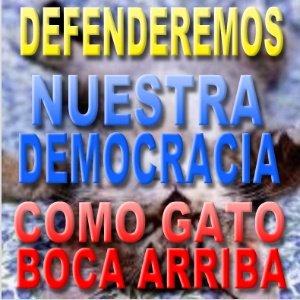 VENEZUELA DEFIENDE SU DEMOCRACIA...